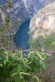 峡谷Sumidero,恰帕斯州,墨西哥 免版税库存照片