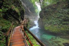 峡谷Vintgar, Triglav -斯洛文尼亚, 图库摄影