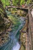 峡谷Vintgar 免版税库存照片