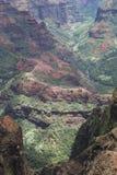 峡谷waimea 库存图片