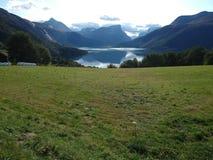 峭壁、山和领域在挪威海湾附近 免版税库存照片
