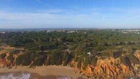 峭壁和海鸟瞰图  影视素材
