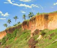 峭壁海岸线喀拉拉热带varkala 图库摄影