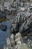 峭壁海风景,在Eyemouth、诺森伯兰角和苏格兰边区附近 免版税图库摄影