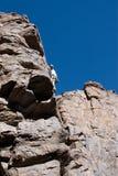 峭壁登山人 免版税库存图片