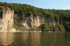 峭壁的密集的森林在河上 免版税图库摄影