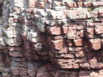 峭壁的细节 免版税图库摄影