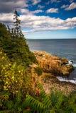峭壁看法和大西洋在阿科底亚国家公园, M 库存照片