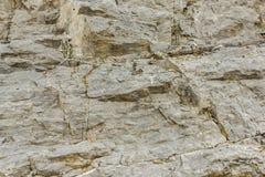 峭壁石头 图库摄影