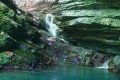 峭壁长满与常春藤和青苔与流动一点瀑布 免版税库存照片