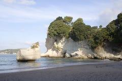 峭壁coromandel小海湾新西兰 免版税库存图片