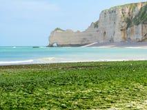 峭壁La Falaise d'Amont在Etretat,法国 免版税图库摄影