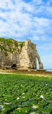 峭壁Porte d'Aval在Etretat,法国 库存图片
