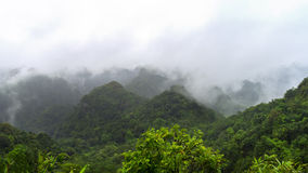 峰顶在猫Ba国家公园 免版税图库摄影
