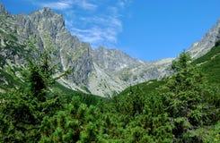 峰顶在高Tatras,斯洛伐克 免版税库存照片