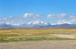 峰顶雪西藏 免版税图库摄影