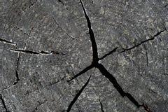 崩裂图象照片纹理木头 库存图片