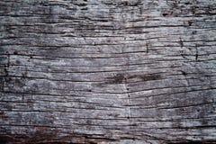 崩裂老木头 免版税库存照片