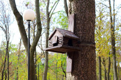 嵌套箱,鸟的鸟舍在公园 免版税库存图片