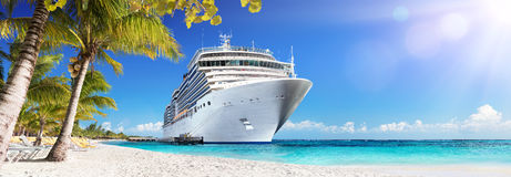 巡航向有棕榈树的加勒比 免版税库存照片
