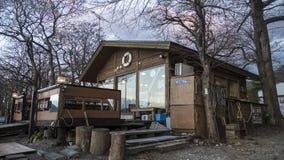 巡航在秋天湖Towadako的一条观光的小船的好的看法 免版税库存图片