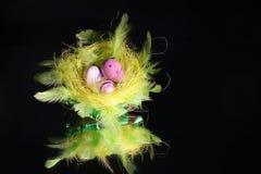 巢和鸡蛋 免版税库存图片