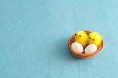 巢用两个鸡蛋和两只婴孩小鸡 图库摄影