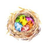 巢用色的复活节彩蛋 水彩 免版税库存照片