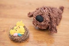 巢用鸡蛋和鸡下条狗 图库摄影