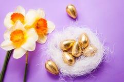 巢用鸡蛋和黄水仙 图库摄影