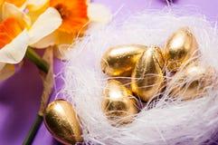 巢用鸡蛋和黄水仙 免版税库存照片