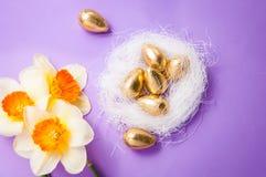 巢用鸡蛋和黄水仙 库存图片