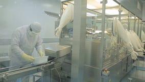 工业制药 检查药片的质量的男性工厂劳工包装在配药工厂 贪婪 免版税库存照片