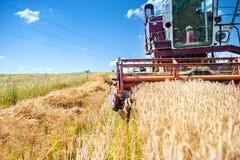 工业在麦子庄稼的葡萄酒收割机械 库存照片