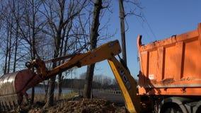 工业挖掘机装货土壤和根到倾销者卡车里 股票视频