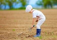 工作与的逗人喜爱的矮小的农夫在春天领域用小锄头 免版税库存照片