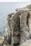 工作他的水獭峭壁的攀岩运动员方式在阿卡迪亚全国P 免版税库存图片