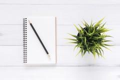 工作区书桌创造性的舱内甲板位置照片  与嘲笑的白色办公桌木桌背景笔记本和铅笔和植物 库存图片