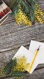 工作区 缠绕与含羞草、水彩、笔墨水和葡萄酒明信片的框架在木背景 笨人 免版税图库摄影
