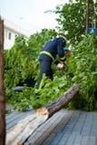 工作在一棵残破的树的消防员在风暴以后。 免版税图库摄影