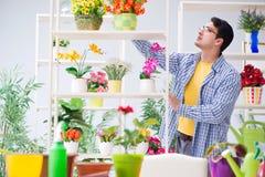 工作在与房子植物的一家花店的花匠卖花人 免版税库存图片