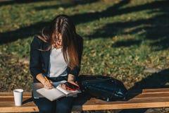 工作在公园,饮用的咖啡和浏览通过她的笔记本的年轻女商人 免版税库存图片