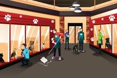 工作在动物庇护所中的人们 免版税库存照片