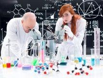 工作在化学实验室的人们 库存图片