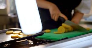 工作在厨房4k里的女性厨师 影视素材