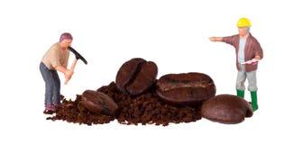 工作在咖啡豆的微型工作者 免版税库存图片