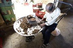 工作在商店的波斯老人在伊朗 2015年9月 库存图片