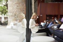 工作在她的网书的现代女商人坐在有大窗口的图书馆或顶楼演播室 免版税库存照片