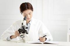 工作在实验室的医疗或科学研究员 库存图片