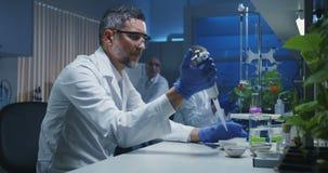 工作在实验室的科学家 影视素材